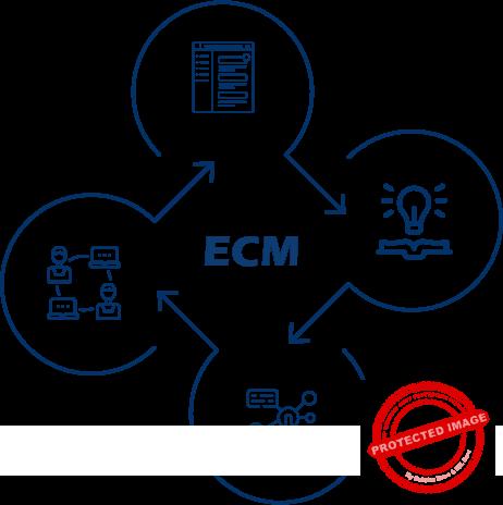 ecommerce Catalog Management hosting